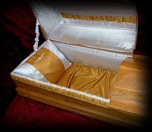 empty coffin - photo #1
